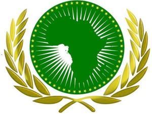البعثة الإفريقية في الأمم المتحدة تعبر عن صدمتها من تصريحات الرئيس الأمريكي المسيئة للأفارقة