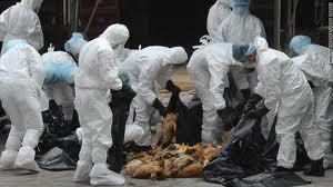 بيان صحفى: تحذيرات  من الحروب البيولوجية السرية  و تخليق الفيروسات والجراثيم والامراض