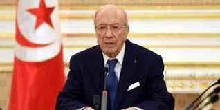 المعارضة المصرية تشن هجوم على الرئيس التونسى