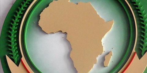 الإرهاب.. والهجرة و الفساد.. ملفات شائكة تتصدر أجندة القمة الإفريقية (تقرير )