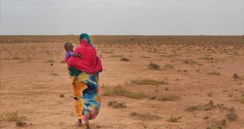 الأمم المتحدة تعتمد خطة إغاثة عاجلة لدول الساحل الإفريقي لإنقاذ سكانها