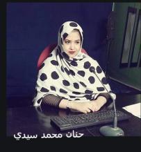 """حوار الثقافات في موريتانيا. رهان المصالحة .. وتعزيز المواطنة """""""